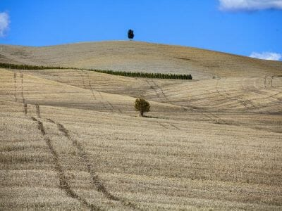 1600px-tuscany-landscape-panorama-hills-and-meadow-P3ELZ25